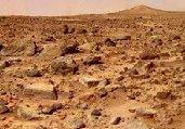 惊人!36年前数据表明NASA发现火星生命