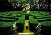 神秘壮观的植物迷宫 据说没人走得出