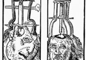 令人毛骨悚然的史上十三种最疯狂医术