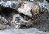 盘点2013年度震撼考古界十大惊人发现