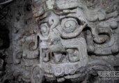 2013年考古界10大意外发现轰动世界