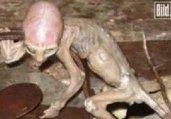 外星人存在地球的37个惊人证据被曝光