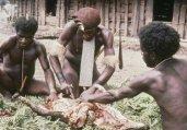 土著部落酋长称吃掉六个外星人!