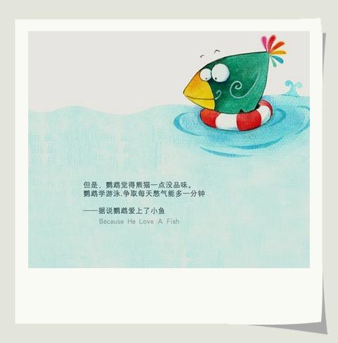 但是,鸚鵡覺得熊貓一點兒也沒品位。鸚鵡學游泳,爭取每天憋氣能多一分鐘。