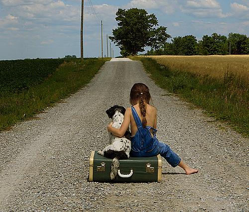 带你一起去旅行
