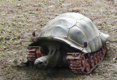 无敌乌龟坦克